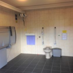 Healthmatic Public Toilet